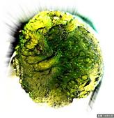 網誌用的圖片:DSCN3360~1.jpg