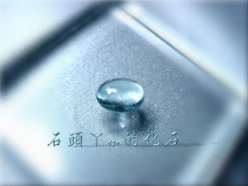 網誌用的圖片:DSCN1817~1.jpg