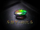 網誌用的圖片:DSCN0577~1.jpg