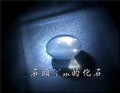 網誌用的圖片:DSCN1441~1.jpg