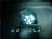 網誌用的圖片:DSCN1556~1.jpg
