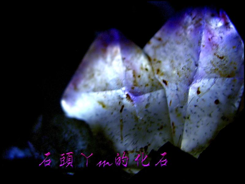 網誌用的圖片:DSCN1589~1.jpg