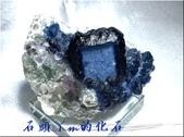 網誌用的圖片:IMG_0031~1.jpg