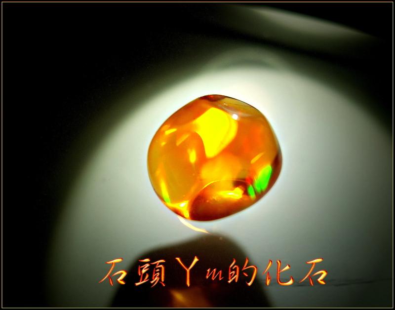 :DSCN0833~2.jpg