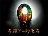 網誌用的圖片:DSCN0589~1.jpg