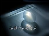 網誌用的圖片:DSCN1489~1.jpg