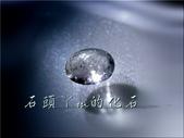 網誌用的圖片:DSCN1063~1.jpg