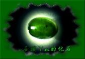 網誌用的圖片:DSCN1096~1.jpg
