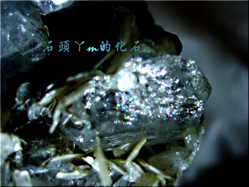 網誌用的圖片:DSCN0586~2.jpg