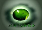 網誌用的圖片:DSCN1095~1.jpg