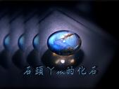 網誌用的圖片:DSCN1163~1.jpg