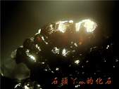 網誌用的圖片:DSCN0931~2.jpg