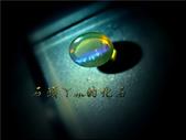 網誌用的圖片:DSCN1430~2.jpg