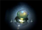 網誌用的圖片:DSCN1482~1.jpg