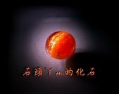 網誌用的圖片:DSCN1105~2.jpg