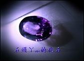 網誌用的圖片:DSCN1539~2.jpg
