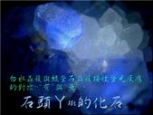 網誌用的圖片:DSCN0756~1.jpg