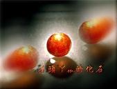 網誌用的圖片:DSCN1106~1.jpg