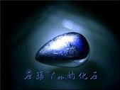 網誌用的圖片:DSCN0983~1.jpg