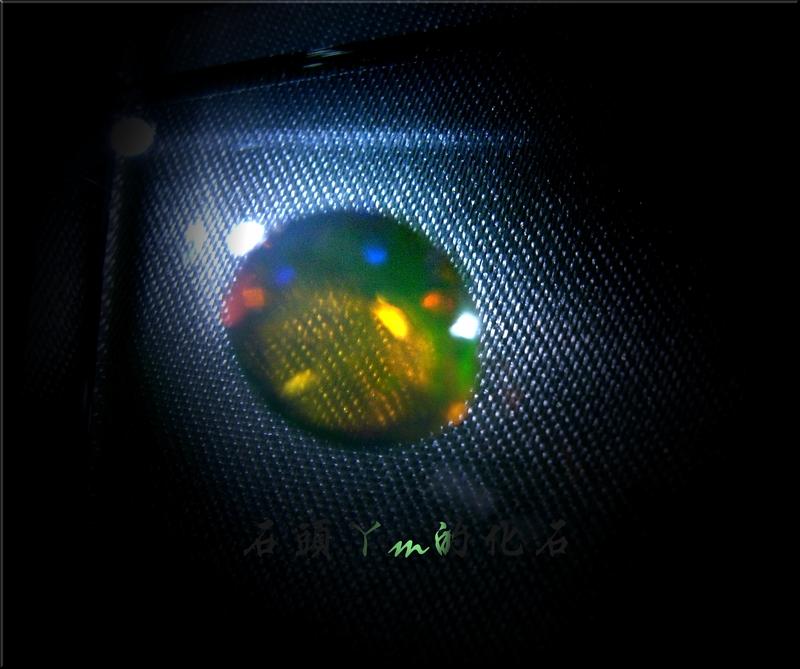 網誌用的圖片:DSCN0574~1.jpg