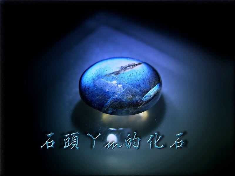 網誌用的圖片:DSCN1159~2.jpg