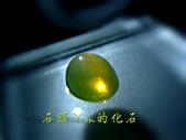 網誌用的圖片:DSCN1424~1.jpg