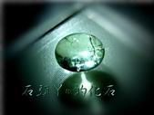 網誌用的圖片:DSCN2006~1.jpg