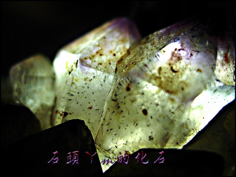 網誌用的圖片:DSCN1585~1.jpg