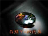 網誌用的圖片:DSCN0583~1.jpg