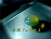 網誌用的圖片:DSCN1425~1.jpg