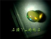 網誌用的圖片:DSCN1429~1.jpg