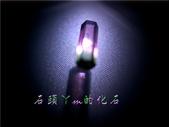 網誌用的圖片:DSCN1446~1.jpg