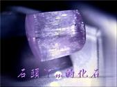 網誌用的圖片:DSCN1295~2.jpg