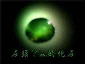 網誌用的圖片:DSCN1310~1.jpg