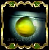 網誌用的圖片:DSCN0382~2.jpg