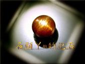 網誌用的圖片:DSCN0052~1.jpg