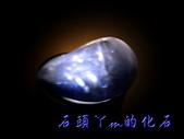 網誌用的圖片:DSCN0964~1.jpg