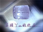 網誌用的圖片:DSCN1307~1.jpg