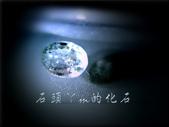 網誌用的圖片:DSCN1061~1.jpg