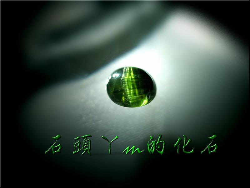 網誌用的圖片:DSCN1314~2.jpg