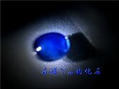 網誌用的圖片:DSCN0907~1.jpg