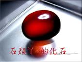 :DSCN1044~1.jpg