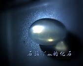 網誌用的圖片:DSCN1438~1.jpg
