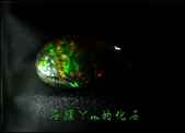 網誌用的圖片:DSCN1780~1.jpg