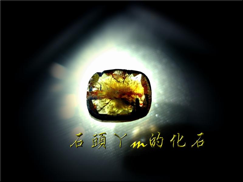 網誌用的圖片:DSCN0857~1.jpg
