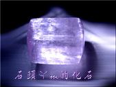 網誌用的圖片:DSCN1288~2.jpg