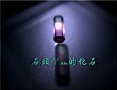 網誌用的圖片:DSCN1444~1.jpg