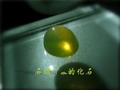網誌用的圖片:DSCN1423~1.jpg