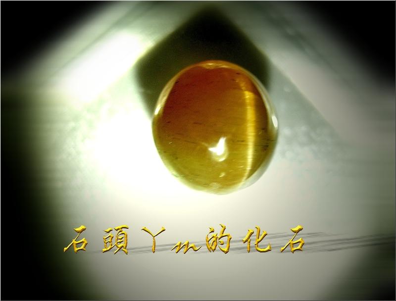 網誌用的圖片:DSCN1950~1.jpg