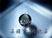 網誌用的圖片:DSCN1261~1.jpg